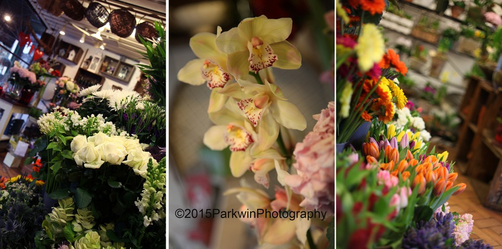 The Flower Shop,  Parkwin Photography